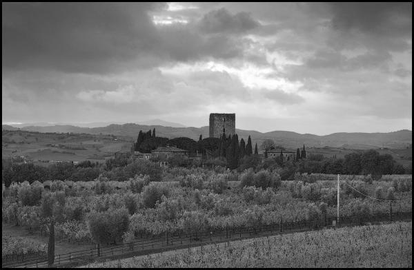 Castello-di-Argiano.jpg